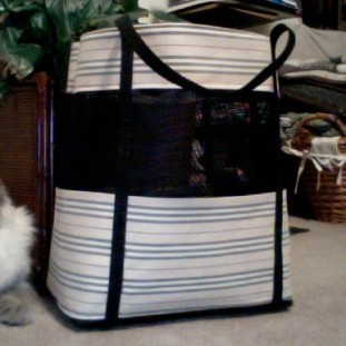 Sew Well - Eddie's Quilting Bee Mesh Screen Bag