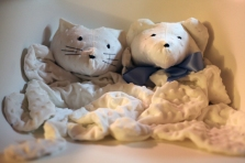 Sew Well - Cotton Ginny's Animal Blankets - Bear and Cat Blankets