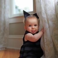 A Black Kitten for Halloween